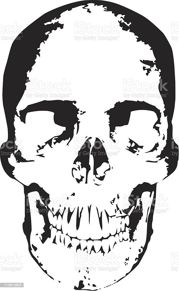 Vector Skull royalty-free stock vector art