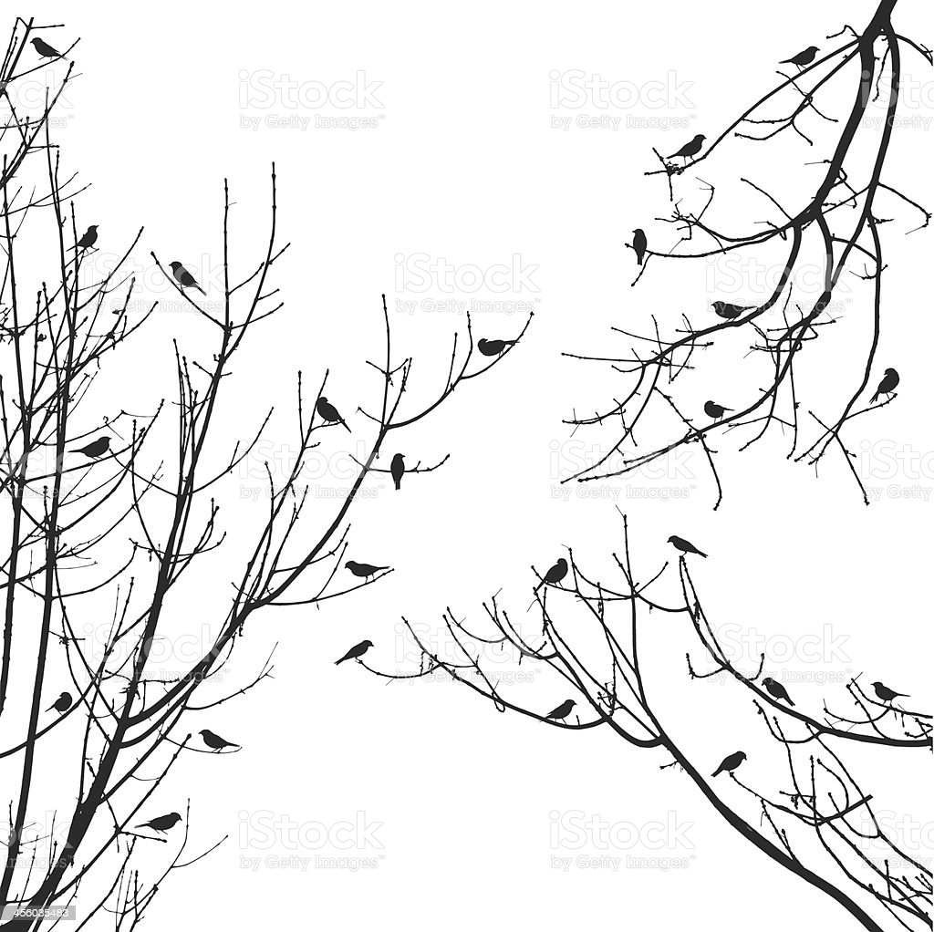 vector sparrow flock on tree branches royalty-free stock vector art