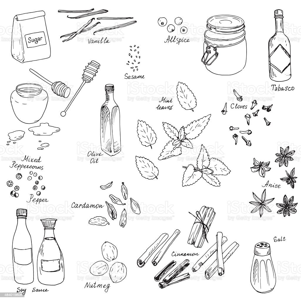 vector spice set vector art illustration
