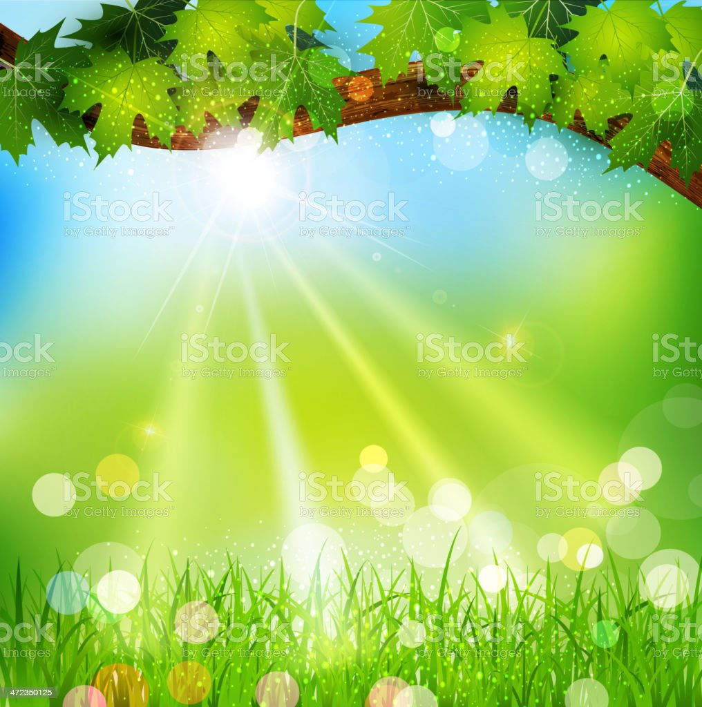 Vector spring background with trees and grass royalty-free stock vector art