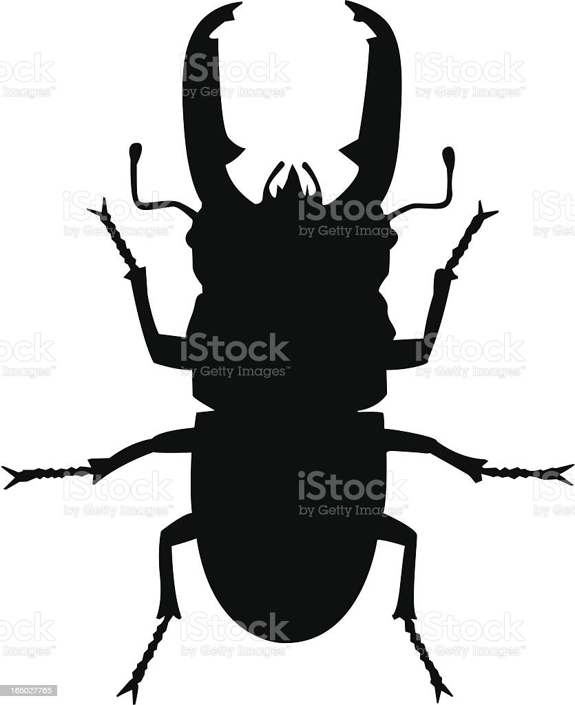 vector - stag beetle vector art illustration