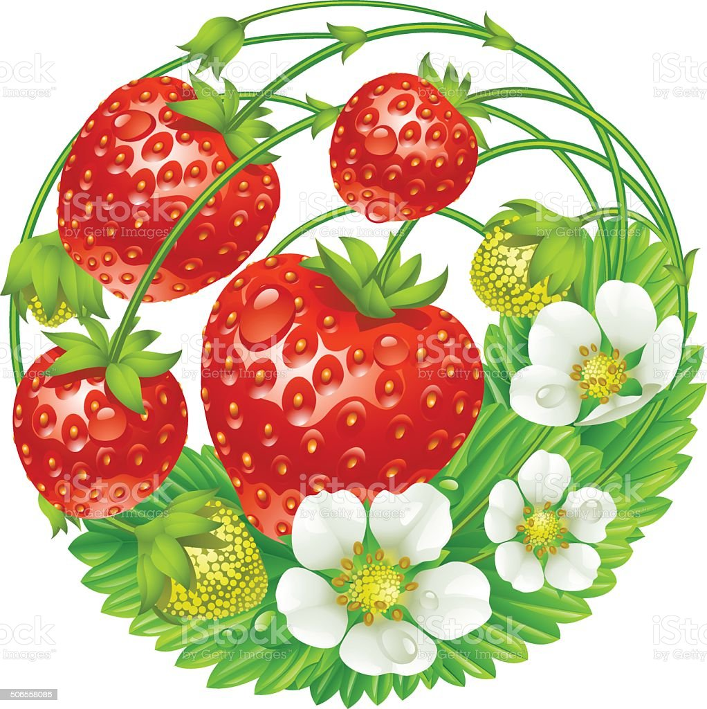 Vector strawberry round composition vector art illustration