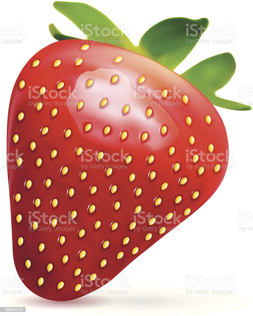 Vector strawberry. royalty-free stock vector art