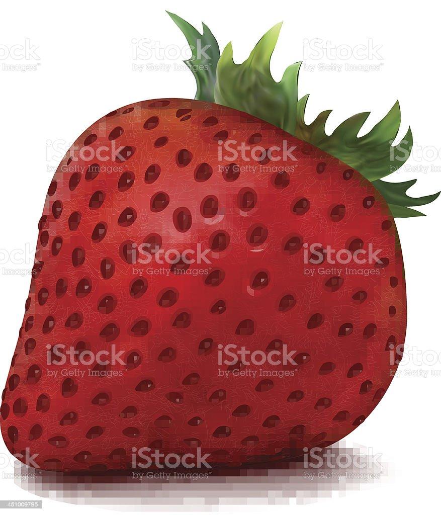 Vector Strawberry royalty-free stock vector art
