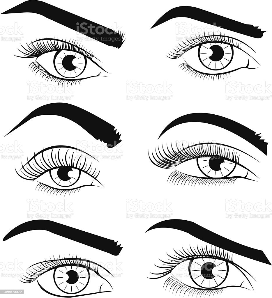 Vector template eyes. Vector illustration vector art illustration