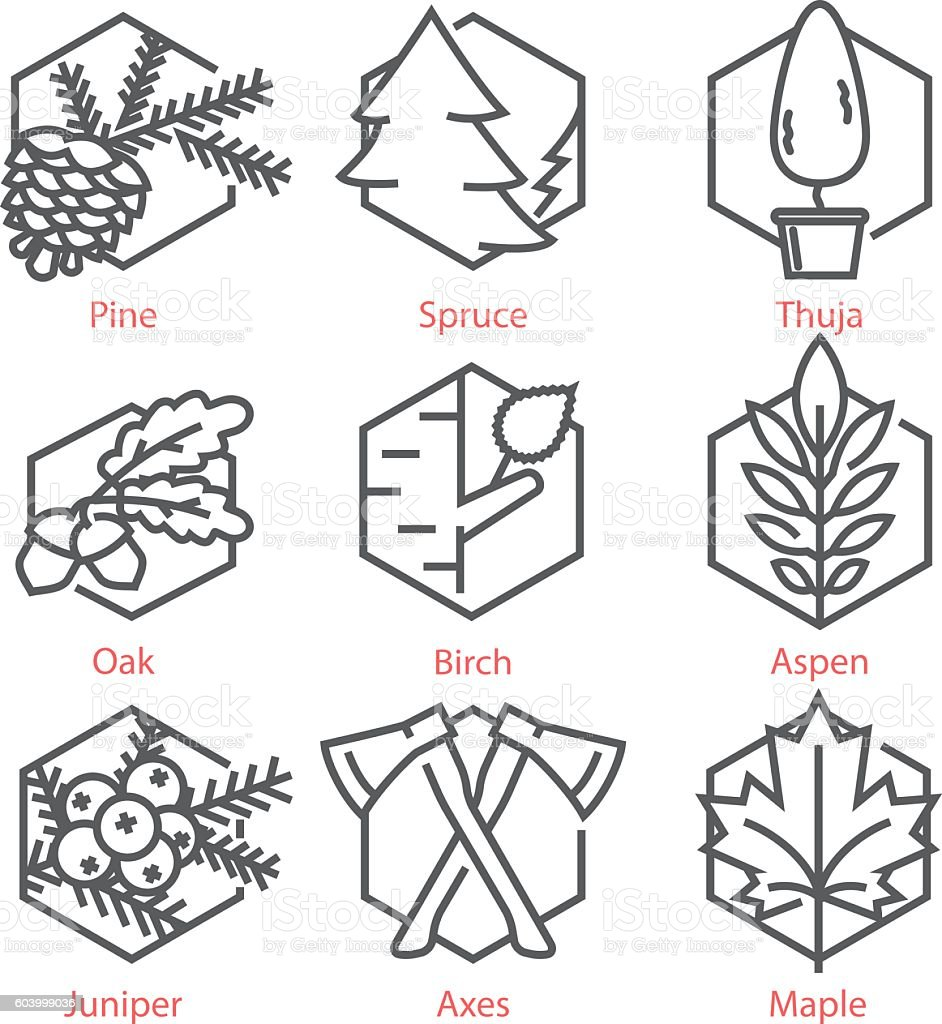 Vector thin line icons set with trees for nature vector art illustration