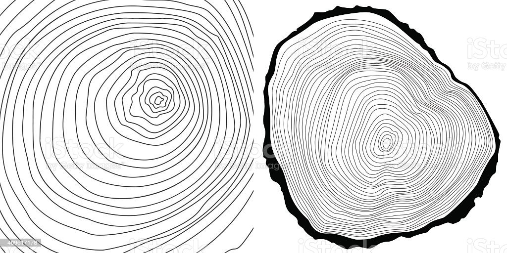 Vector tree rings background and tree log cutted vector art illustration