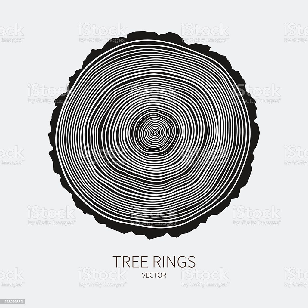 Vector tree rings conceptual background vector art illustration