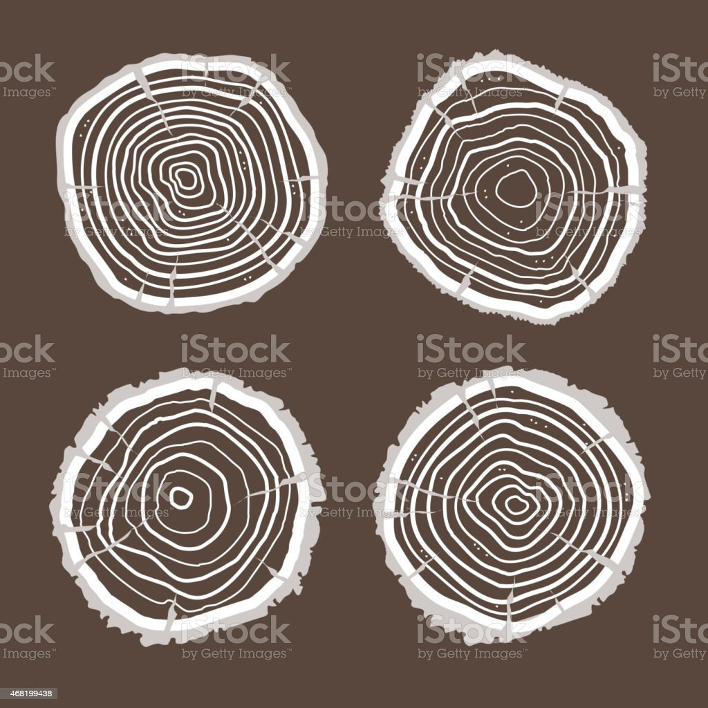 Vector tree rings set. Flat Design vector art illustration