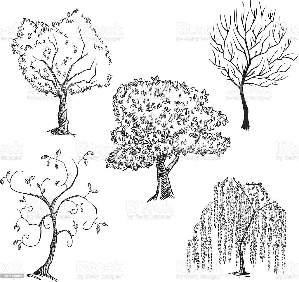 Vector trees collection vector art illustration