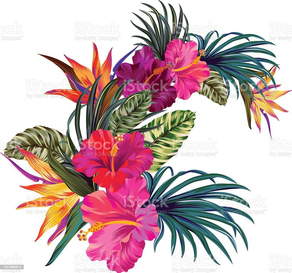 vector tropical bouquet vector art illustration