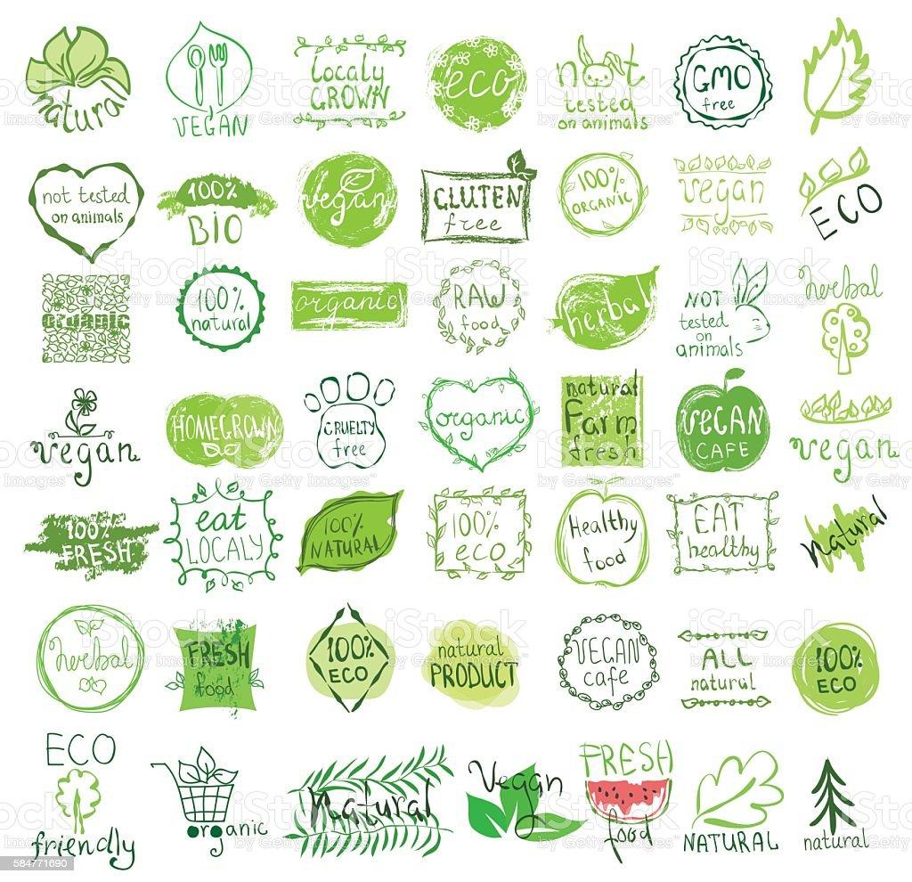Vector vegan, natural and eco icons. vector art illustration