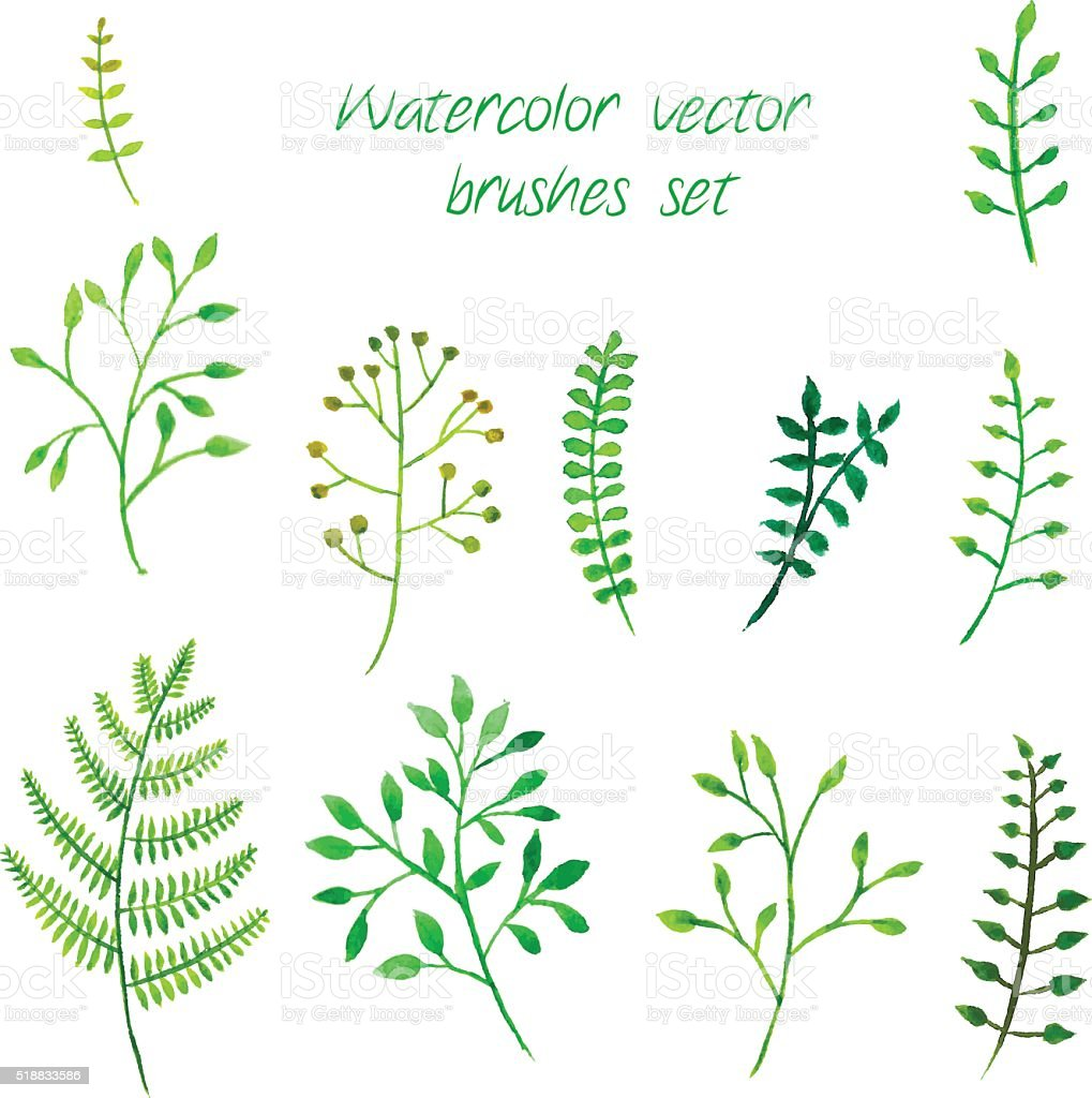 Vector watercolor brushes set. vector art illustration