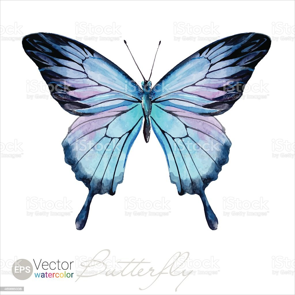 Vector Watercolor Butterfly The Ulysses butterfly vector art illustration