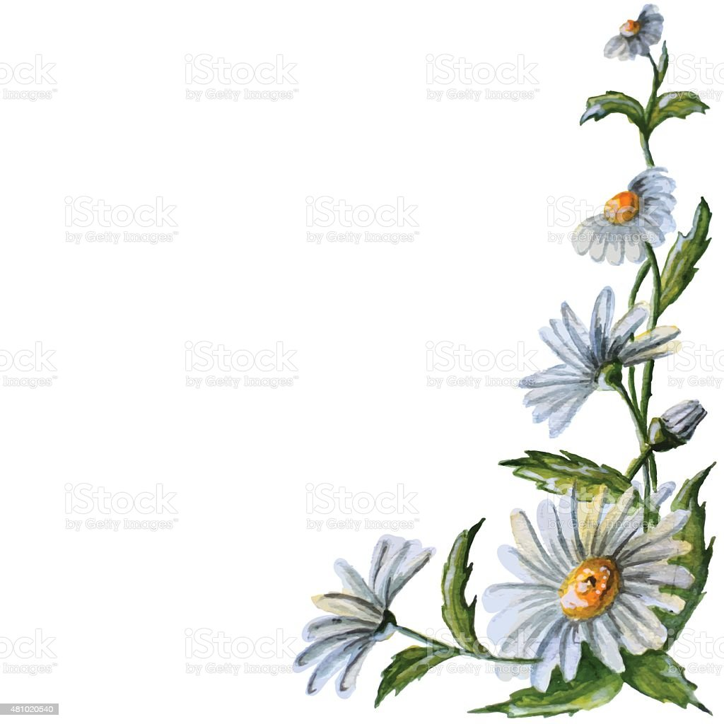 vector watercolor flowers vector art illustration