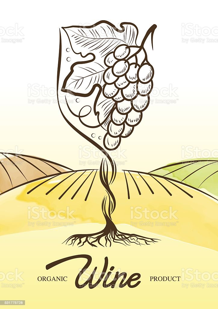 Vector watercolor illustration of vine grape and rural field vector art illustration