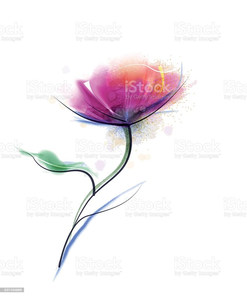 Vector watercolor painting purple cosmos flower on white paper...