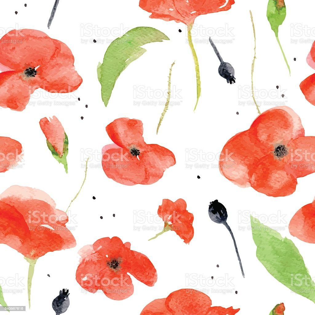 Vector watercolor pattern with red poppies on white background. vector art illustration