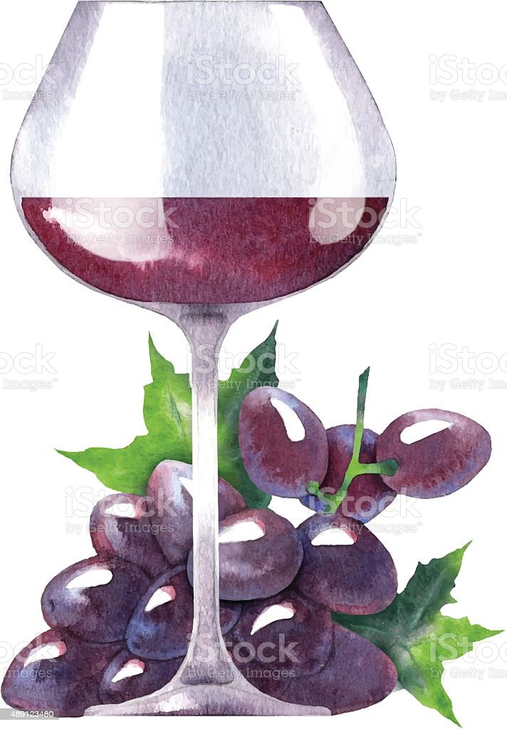 Vector watercolor sketch of wine and grapes. vector art illustration
