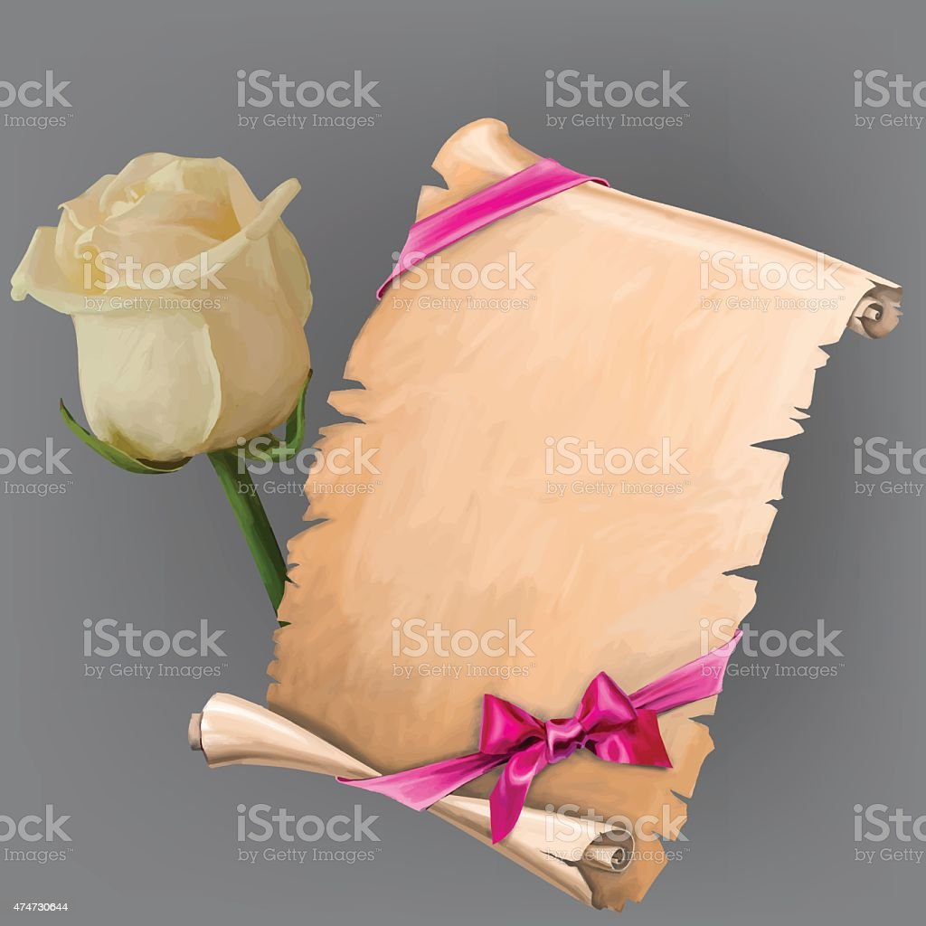 Vector white rose and scroll with ribbon vector art illustration