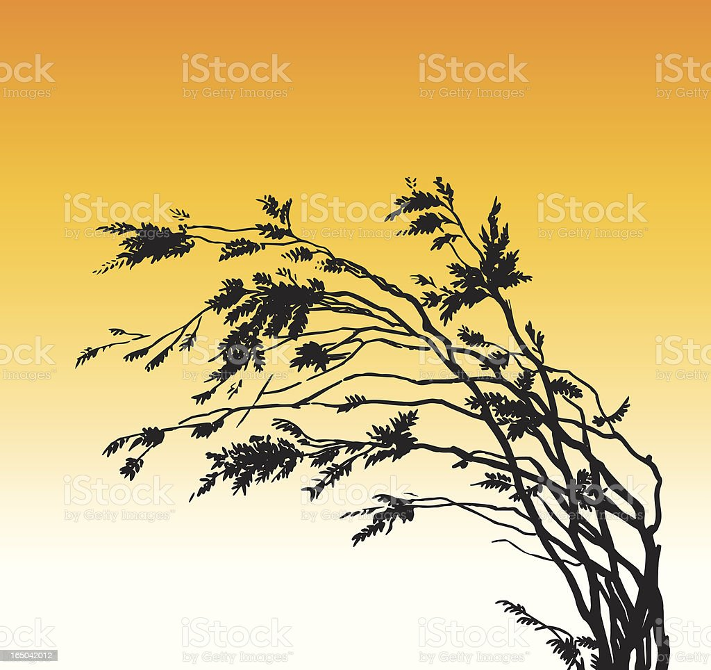 Vector Wind in Branches royalty-free stock vector art