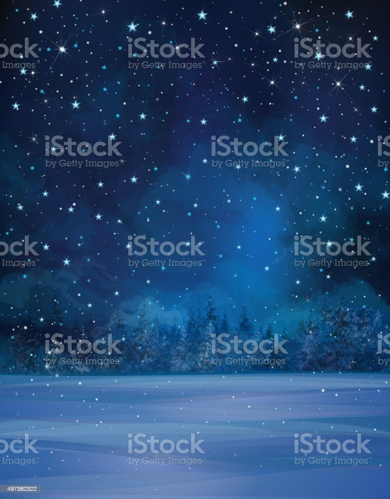 Vector winter night landscape. vector art illustration
