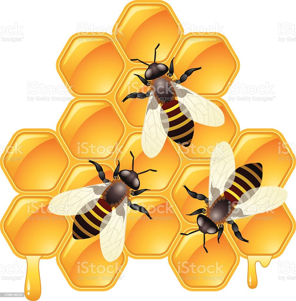 vector working bees on honeycells vector art illustration