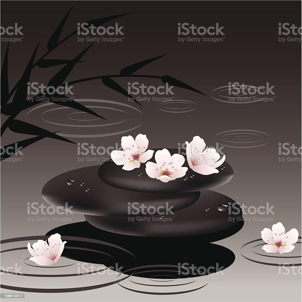 vector zen stones and cherry flowers royalty-free stock vector art
