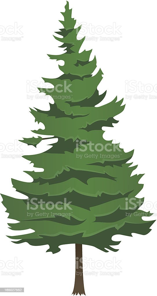 Vectorial illustration of an evergreen pine tree vector art illustration