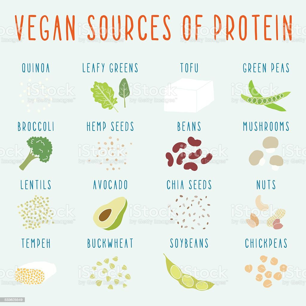 Vegan sources of protein. vector art illustration