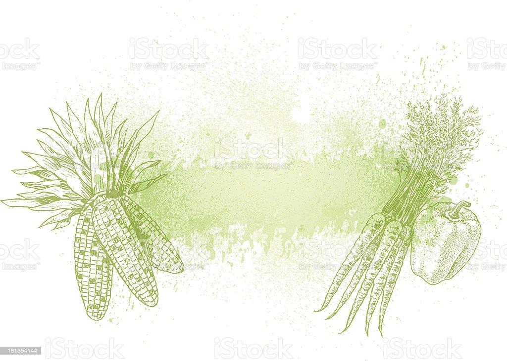 Vegetable Background - Corn, Carrots, Green Pepper royalty-free stock vector art