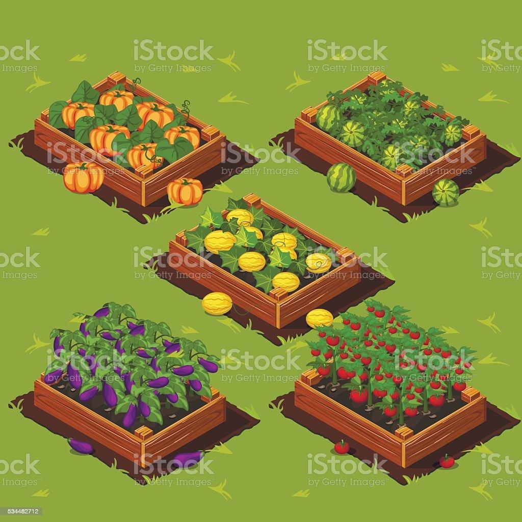 Vegetable Garden Box vector art illustration