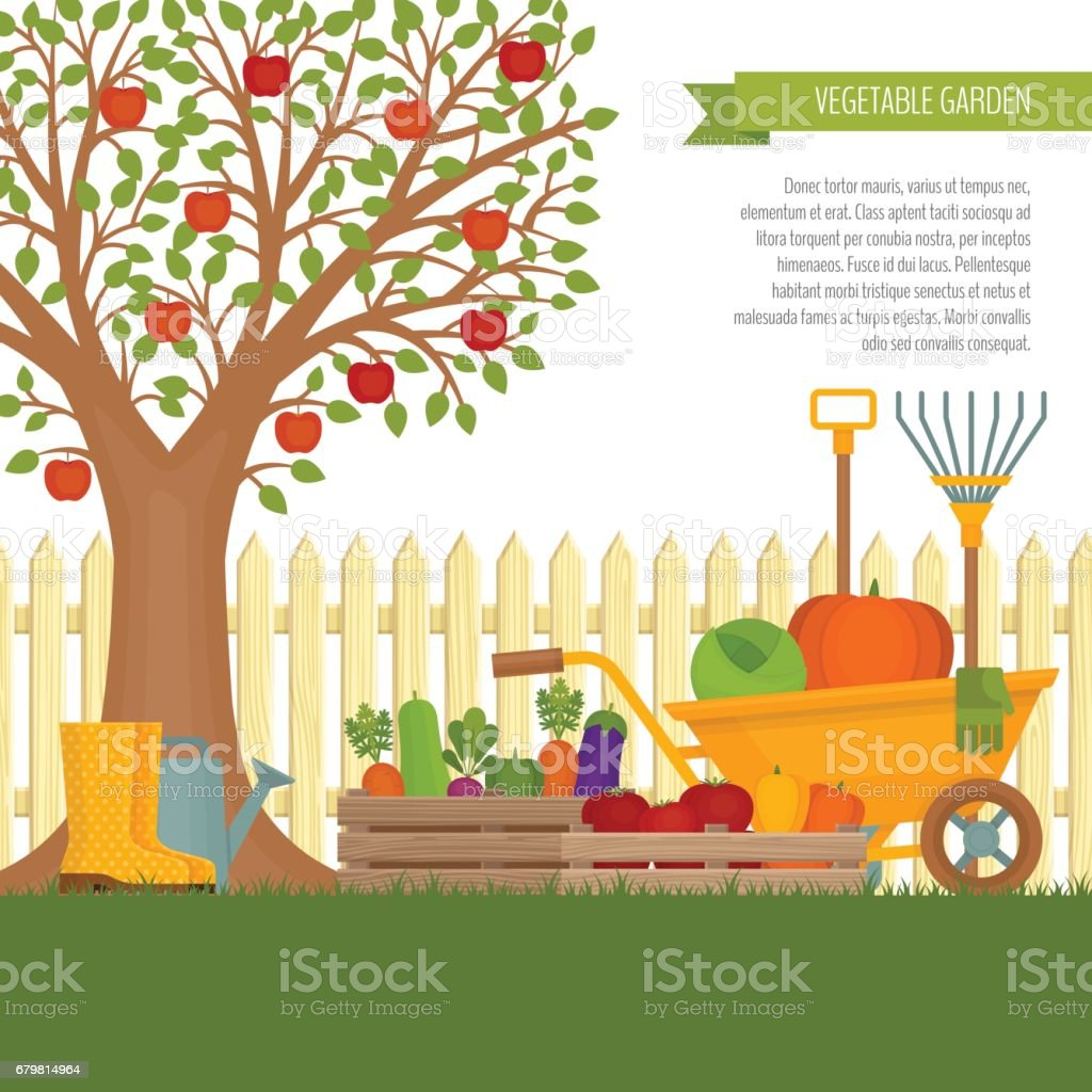 Vegetable garden art - Vegetable Garden Concept Of Gardening Banner With Vegetable Garden Organic And Healthy Food