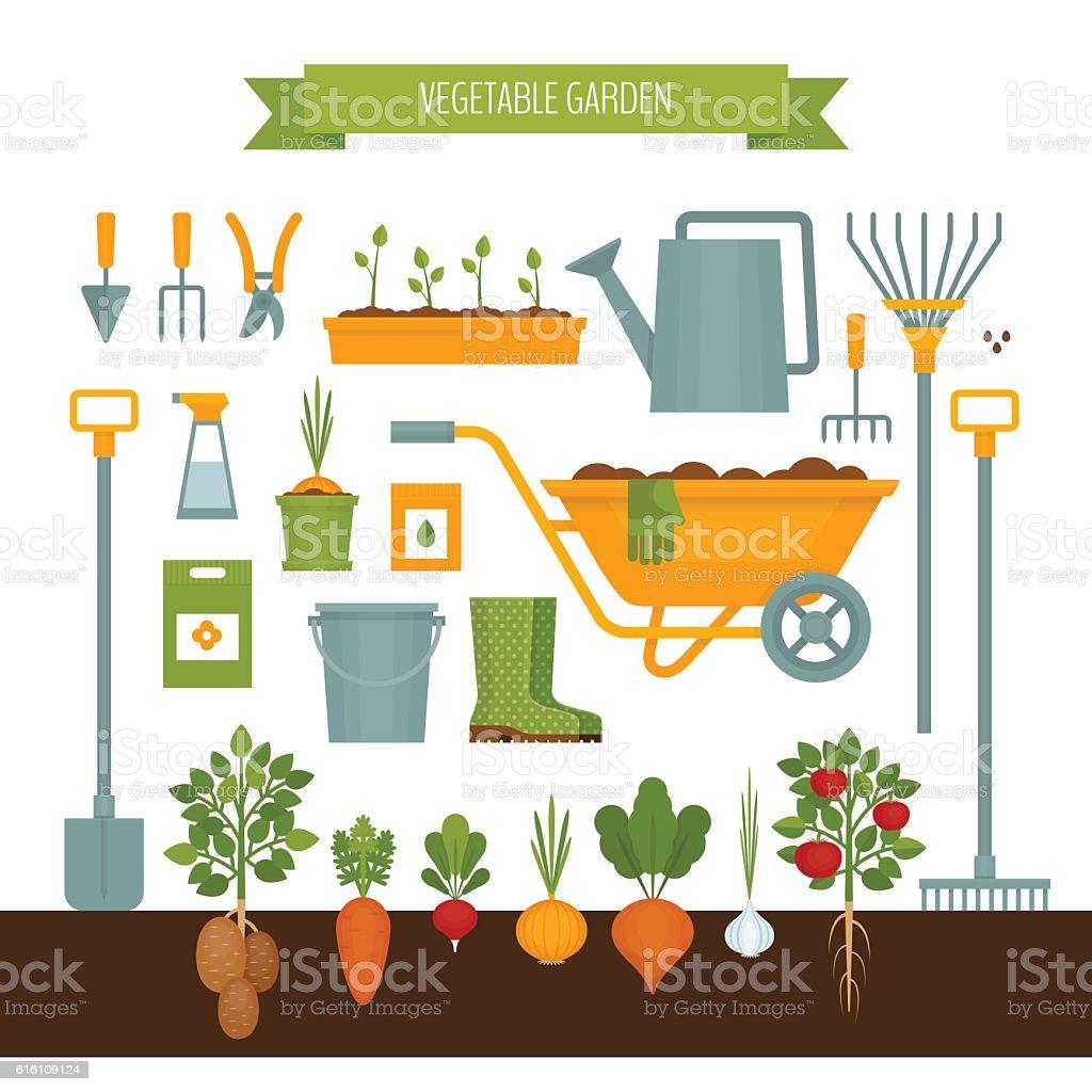 Vegetable garden. Garden tools. Flat style, vector illustration. vector art illustration