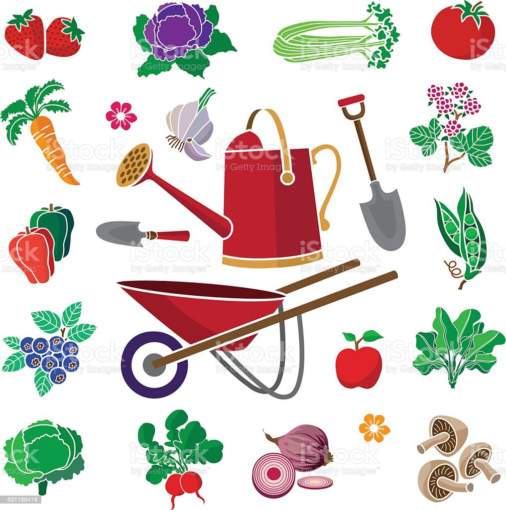 vegetable garden produce with wheel barrow and watering can vector art illustration