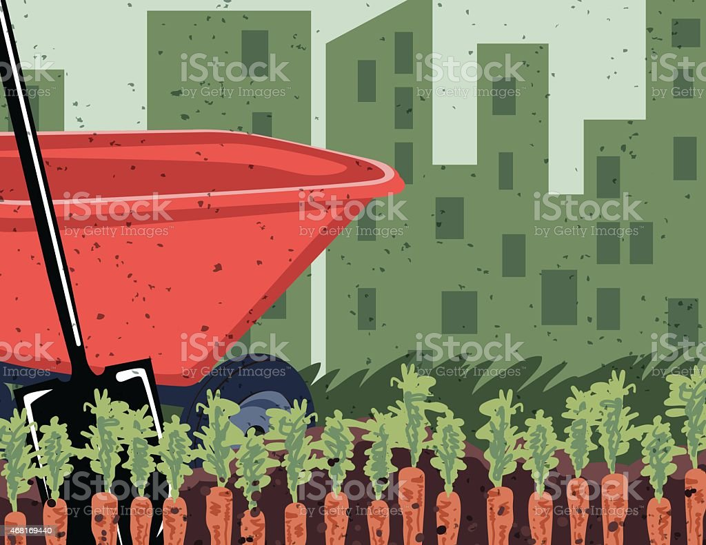 Carrots Growing In Vegetable Garden Rows With Wheelbarrow And Shovel vector art illustration