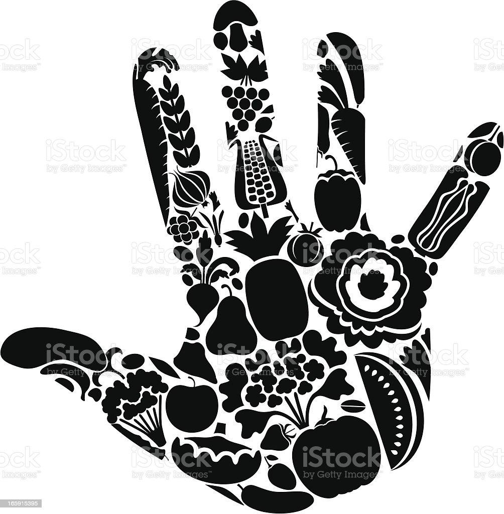 Vegetable hand vector art illustration