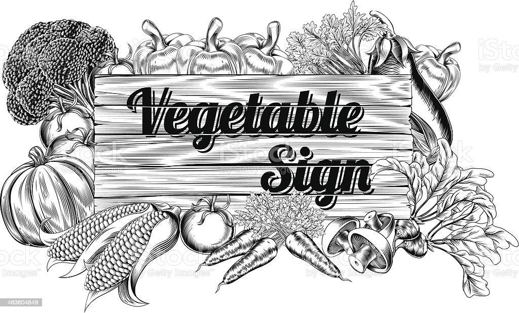Vegetable produce sign vector art illustration