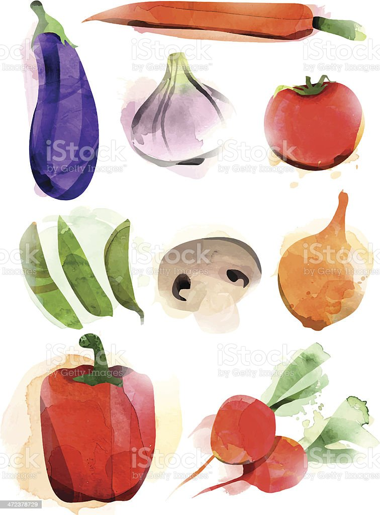 Vegetable Set vector art illustration