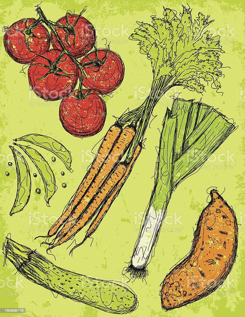 Vegetable sketches with texture vector art illustration