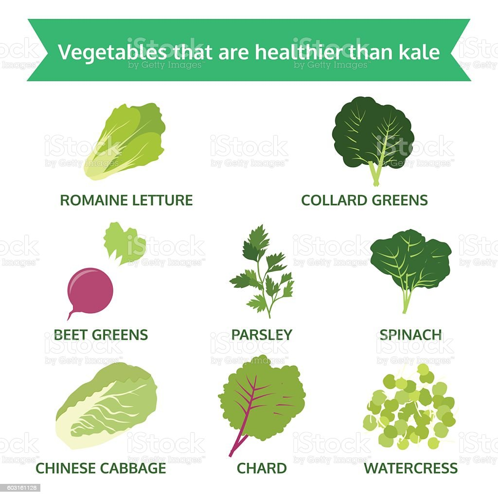 vegetables are healthier than kale, info graphic food, vector vector art illustration