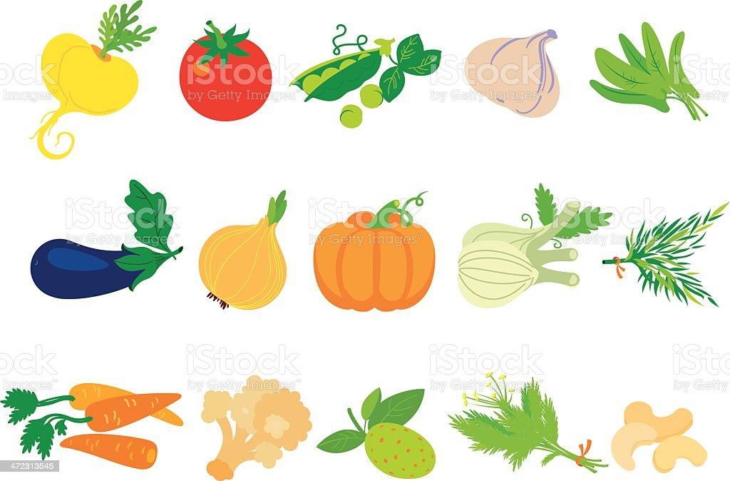 Vegetables big set vector art illustration