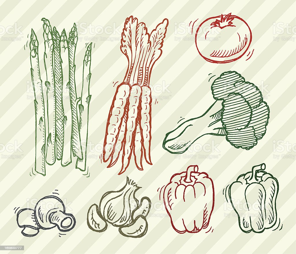 Vegetables - Carrots, Broccoli, Mushrooms, Tomato royalty-free stock vector art
