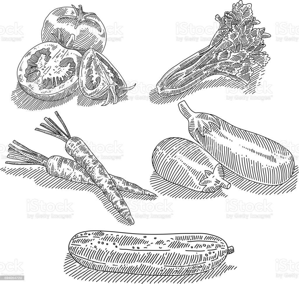 Vegetables Drawing vector art illustration