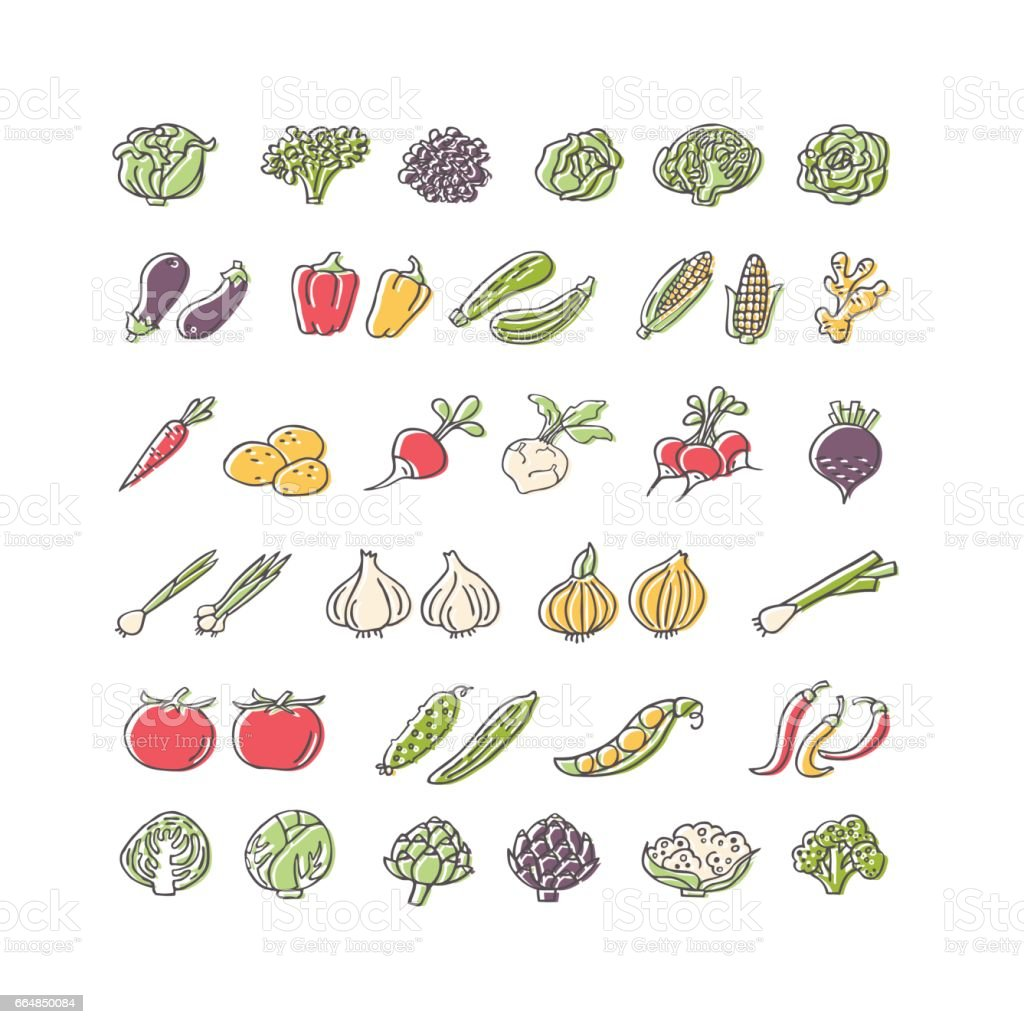 Vegetables hand drawn icon set in flat style vector art illustration