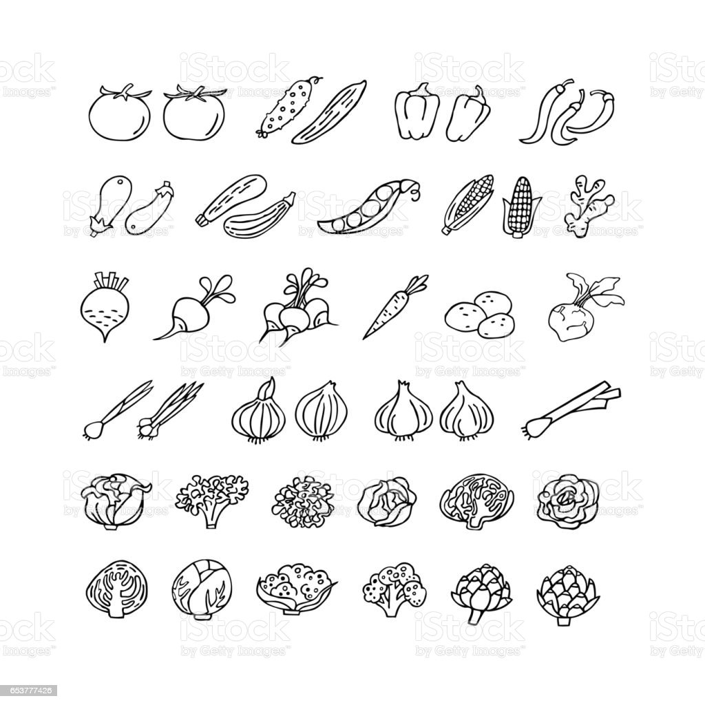 Vegetables hand drawn icon set in line style vector art illustration