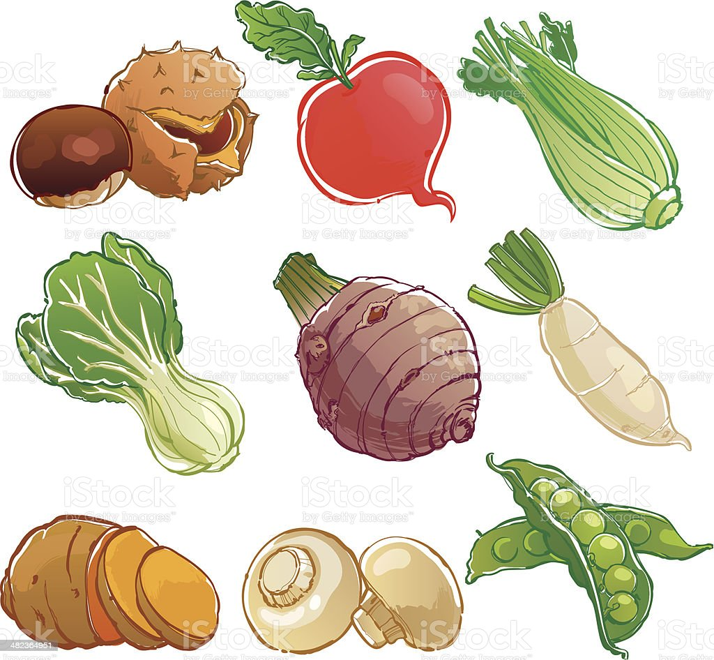vegetables icon royalty-free stock vector art