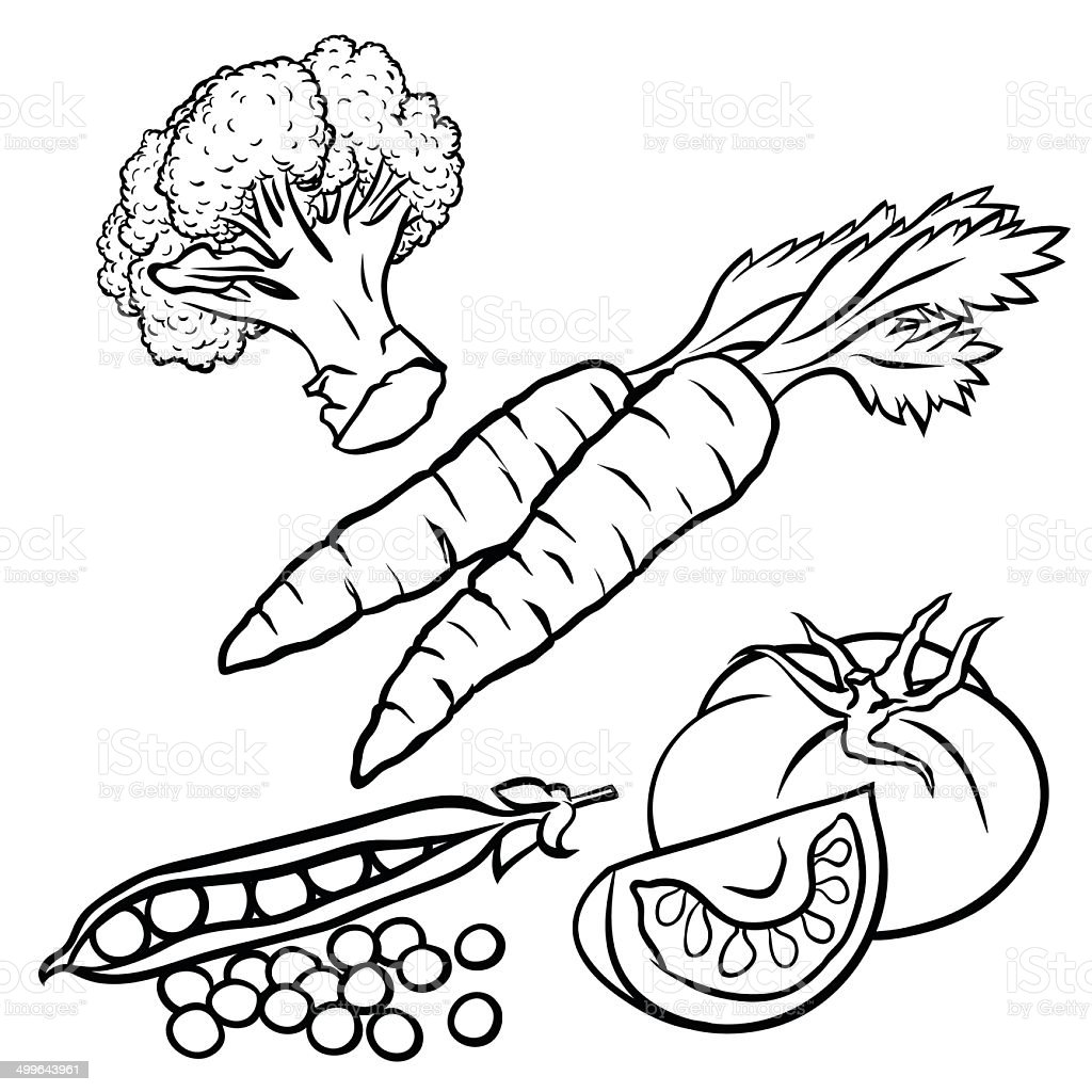 Coloring book pictures of vegetables - Vegetables Illustration For Coloring Book Design Royalty Free Stock Vector Art