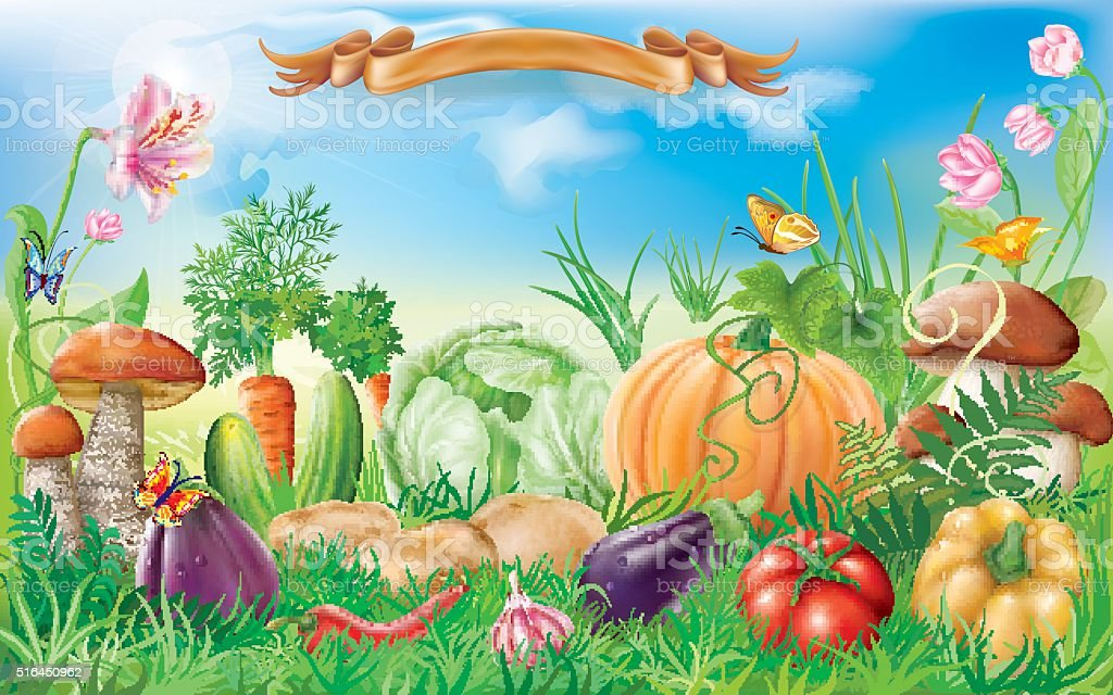 Vegetables in a landscape vector art illustration