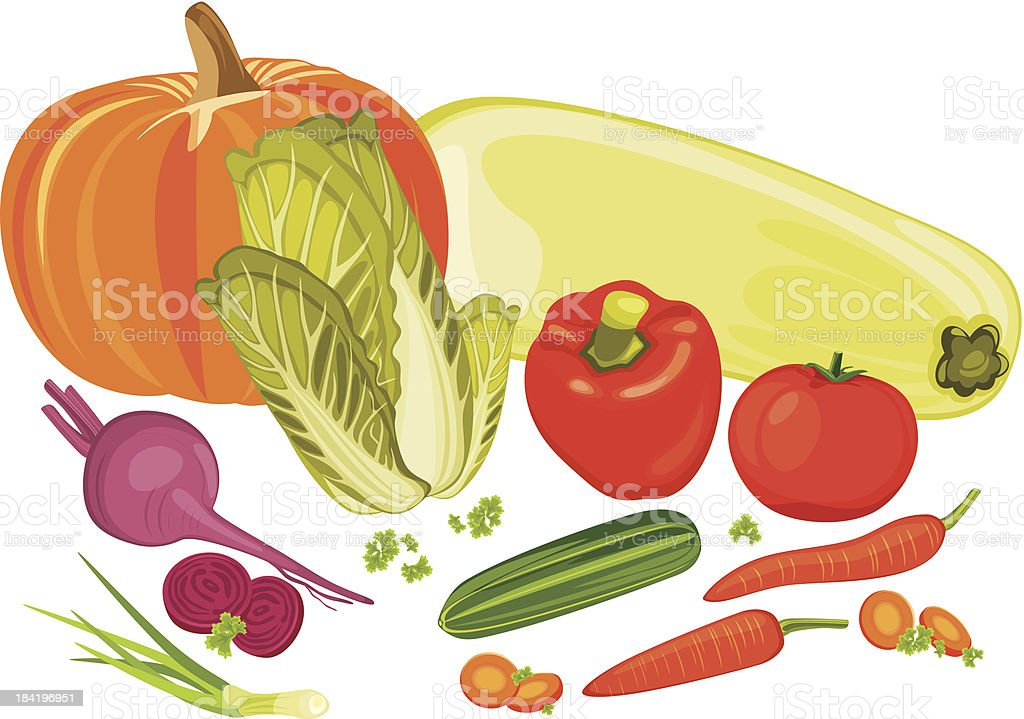 Vegetables isolated on the white royalty-free stock vector art